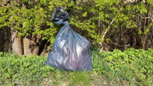 Frühjahrsputz und Müllsammelaktion